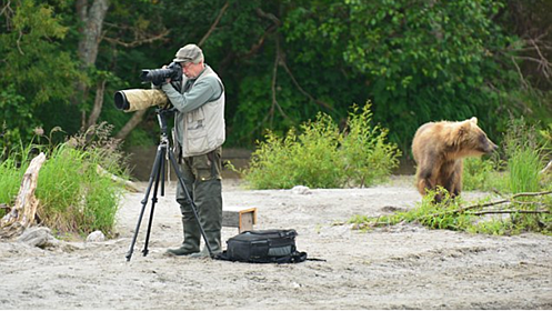 Photographer sets up tripod unaware there is a giant bear ...